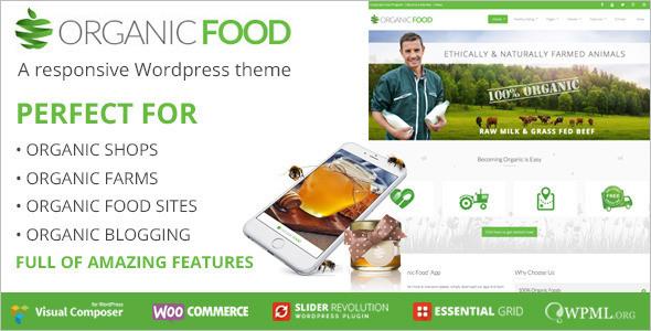 CleanOrganic WordPress Theme