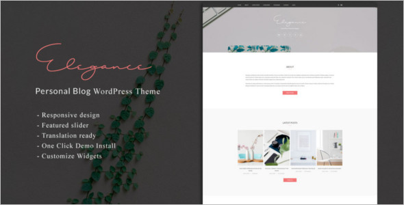 Custamizable WordPress Theme