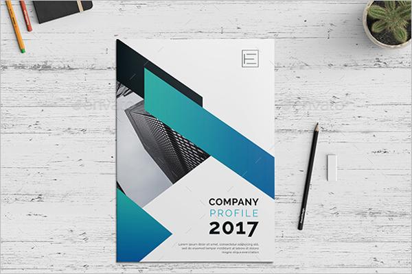 Editable Portpolio Brochure Template