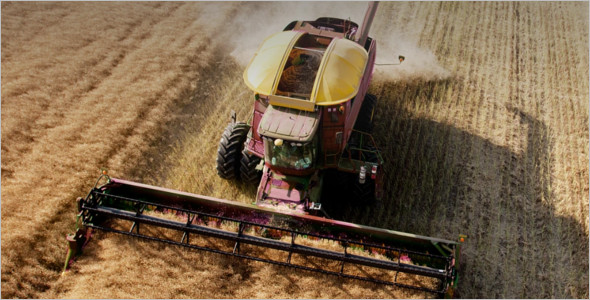 Farming WordPress Theme
