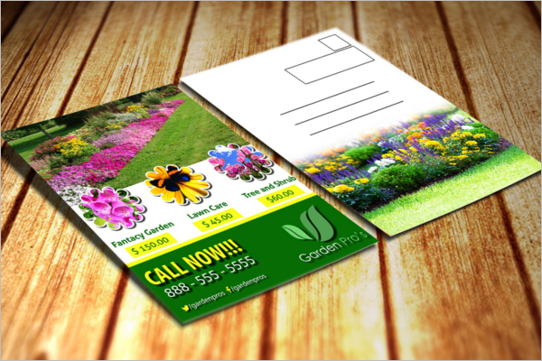 Garden Postcard Email Template