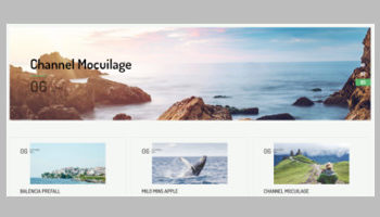 Grid Style WordPress Themes