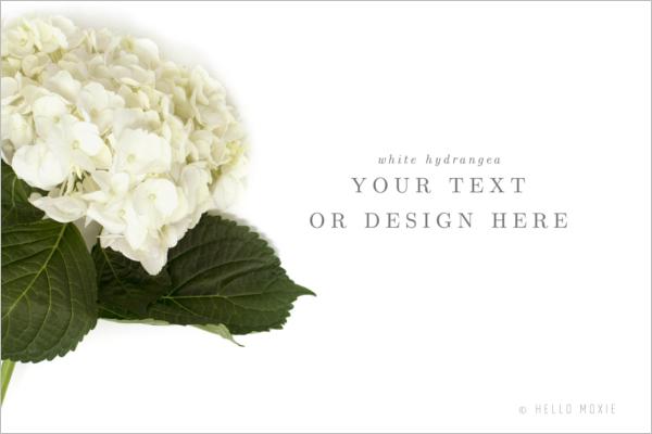 Hydrangea Marketing Banner Template