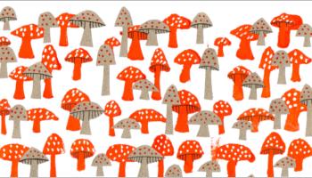 Mushrooms Seamless Patterns