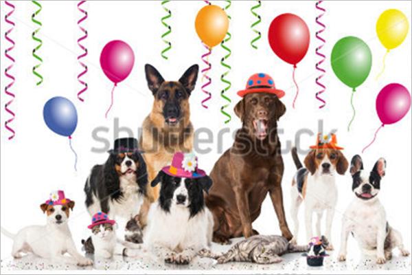 Pets Celebrations Design