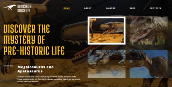 Portfolio Museum WordPress Template