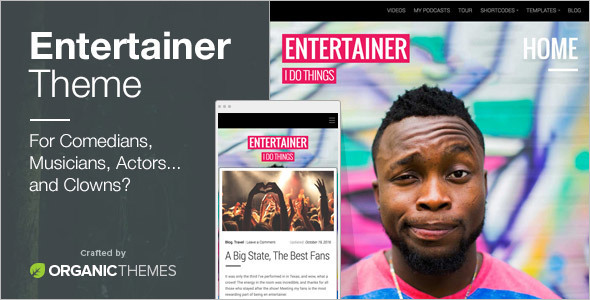 Professional Entertainment WordPress Template