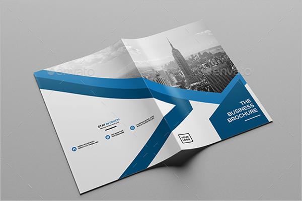 Real Estate Business Brochure