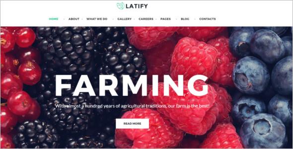 Responsive Organic WordPress Theme