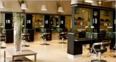 Salon Prestashop Themes