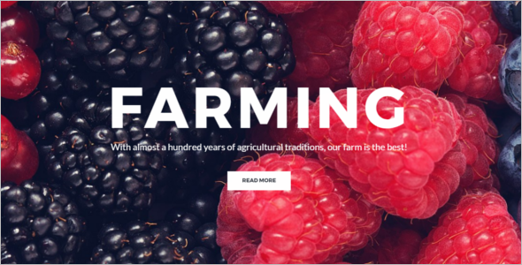Simple Agriculture WordPress Theme