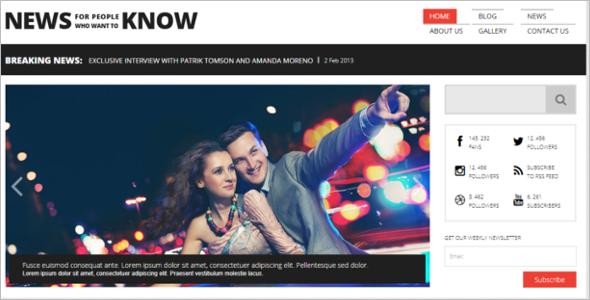 WordPress News Portal Theme
