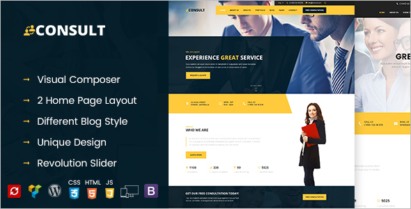 Analytical Consultant Business WordPress Theme