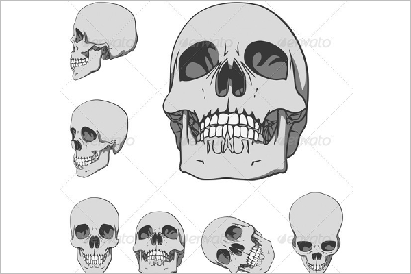 Ancient Human Skull Vector