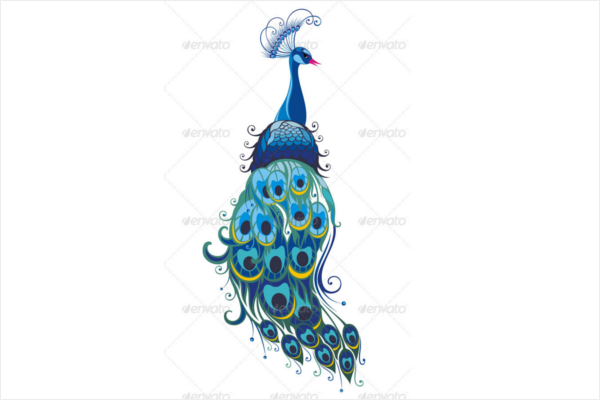 Beautiful Full Peacock Vector