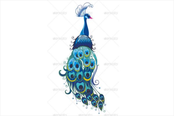 Beautiful Full Peacock Vector