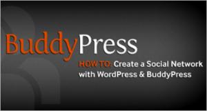 BuddyPress Social Network Themes