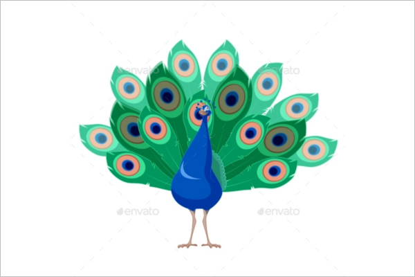 Cartoon Peacock Pattern