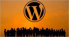 19+ Best Community Based WordPress Themes