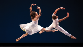 Dance School WordPress Themes