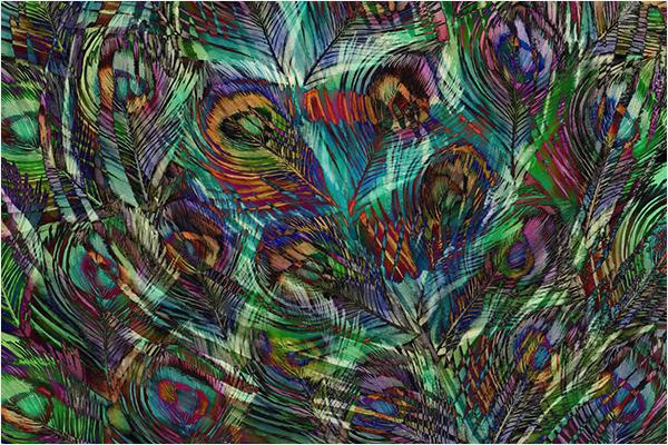 Digital Art Peacock Feather