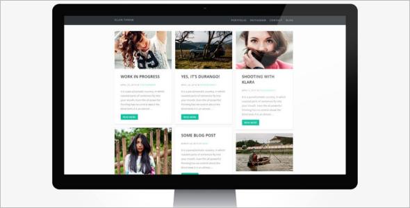 Flexible Portfolio WordPress Theme