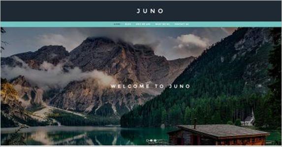 Free WordPress Landing Page Builder