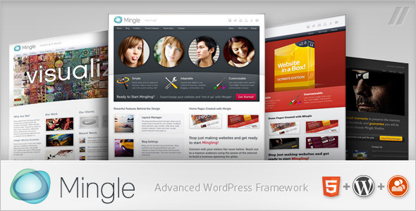 High Resolution BuddyPress WordPress Theme