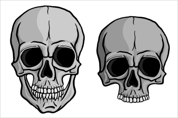 Isolated Human Skull Vector Design