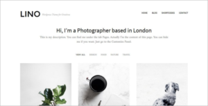 Metro Portfolio WordPress Theme