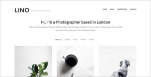 Metro Portfolio WordPress Theme