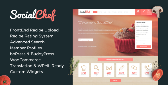 Multi Usage Social Network WordPress Theme