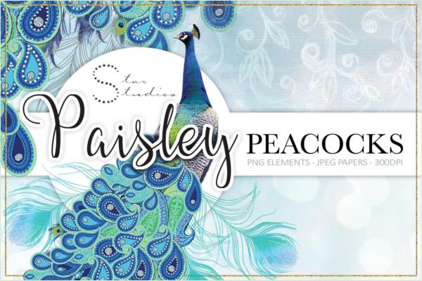 Paisley Peacock Patterns