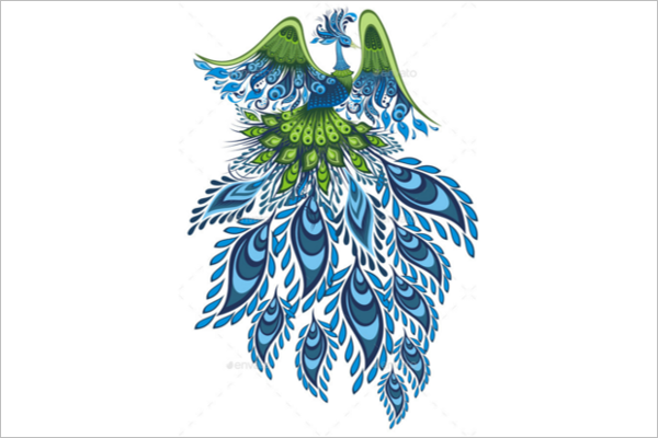 Peacock Feather Patterns