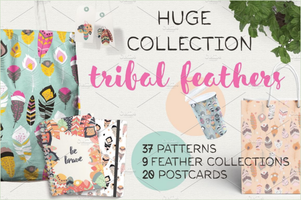 Peacock Feather Postcards