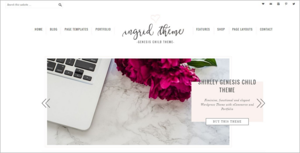 Portfolio ECommerce WordPress Theme