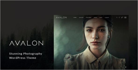 Responsive WordPress Photography Theme