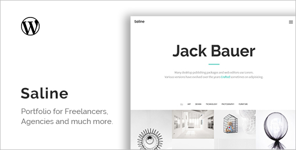 Saline Freelancer WordPress Theme