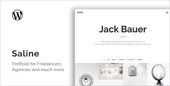 Saline Portfolio WordPress Theme