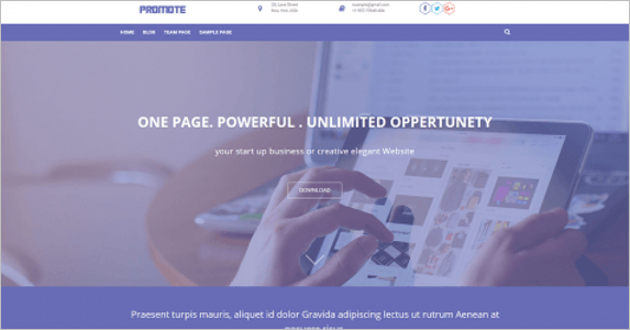 Sample Landing Page Theme
