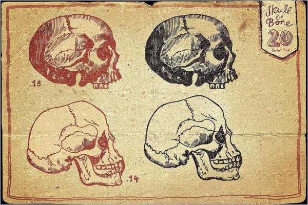 Vintage Skull Vector Design
