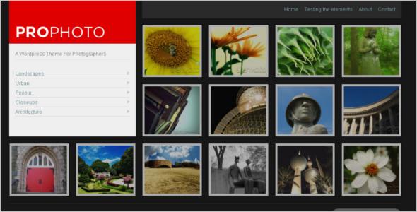 WordPress Photographer Theme