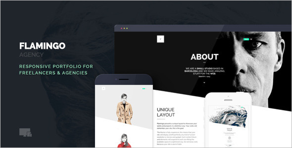WordPress Freelancer Plugin Theme
