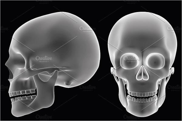 Halloween Skull Vector Design