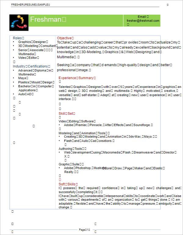Animator Resume Format PDF