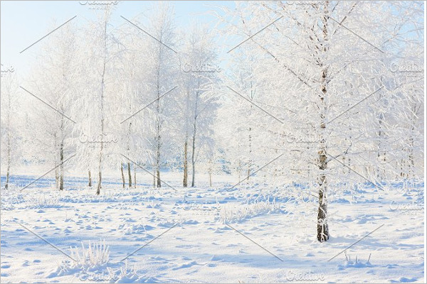 Background Winter Template