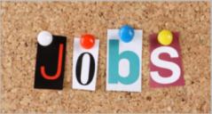 23+ Best Job Board Templates