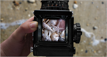 Camera Mockup Templates