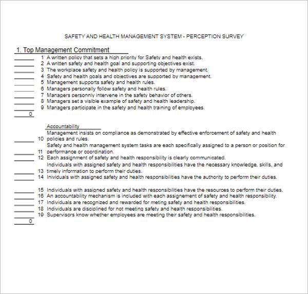 Excel Perception Survey Template