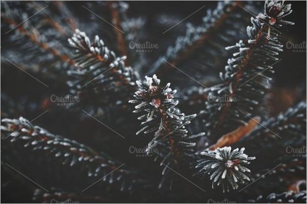Frozen Winter Background Design